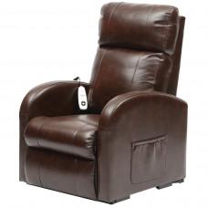 Daresbury 系列可升降電動卧椅(小型) - 板栗